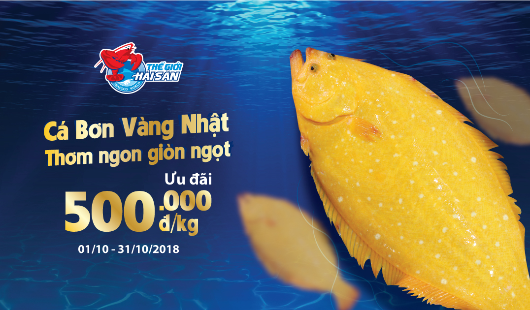 Ca-Bon-Vang-web-baiviet thang 10