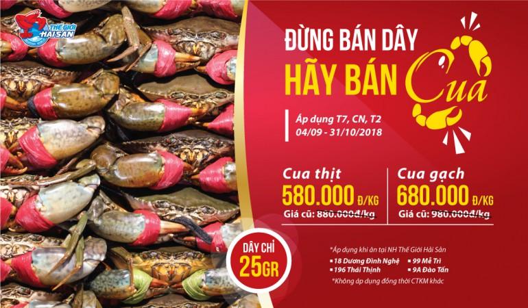 HN-BanCuakoBanDay-web-baiviet
