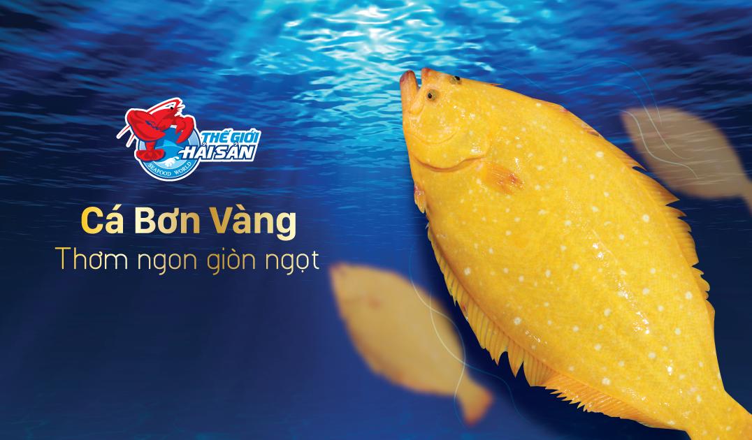 Ca-Bon-Vang-web