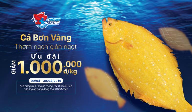 Ca-Bon-Vang-web-preview