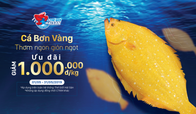 Ca-Bon-Vang-web-preview