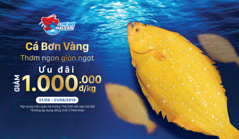 HS-Ca-Bon-Vang-web-preview