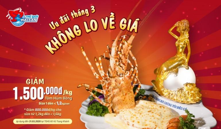 TomHumBong(thang3) 1500k WebPreview