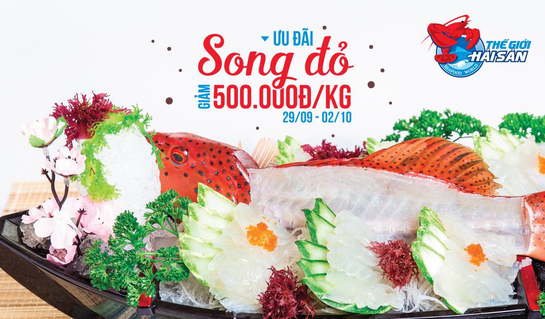 HS-SongDo-500k