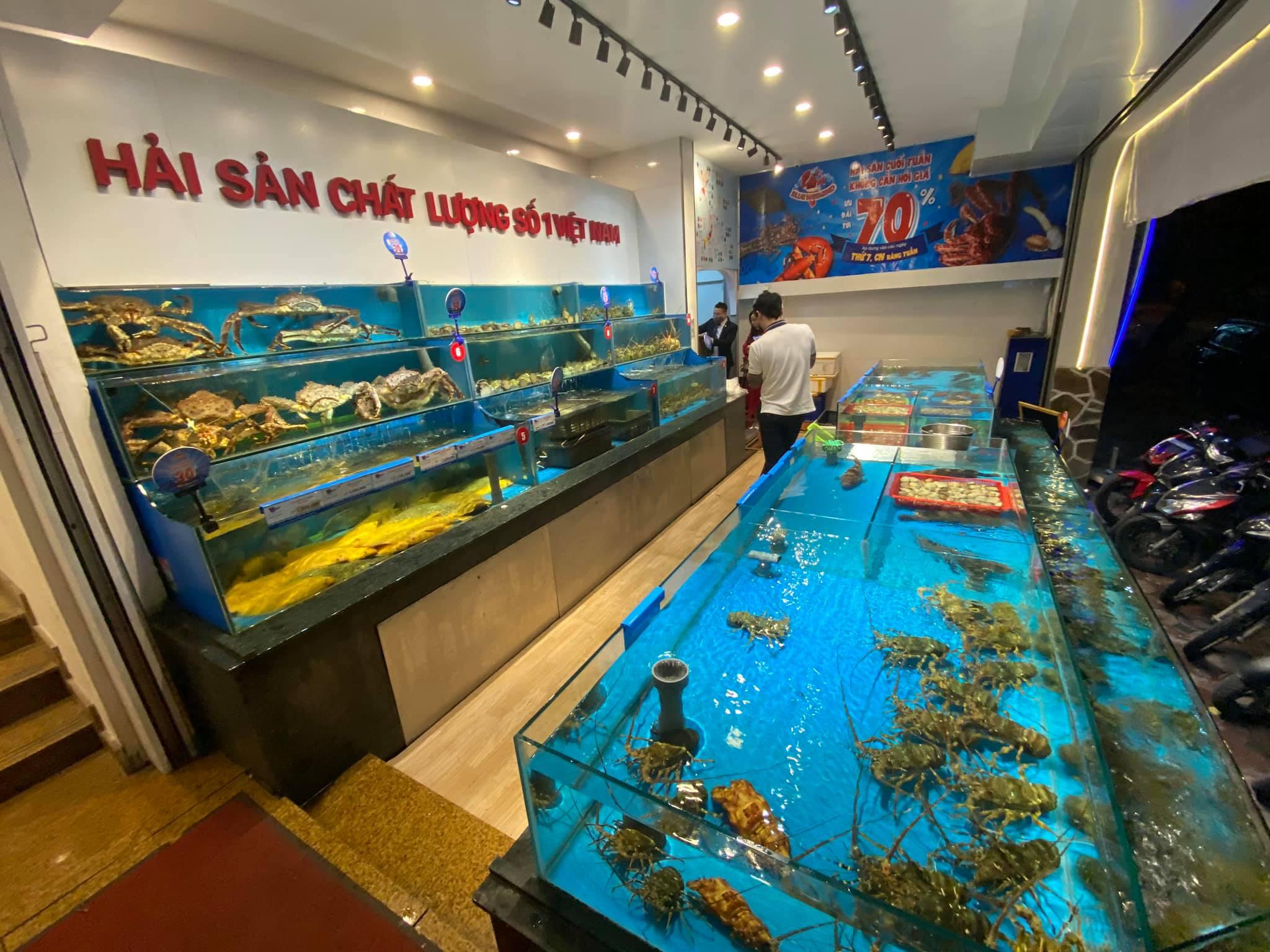 Ảnh: Hệ thống bể tại Thế giới hải sản