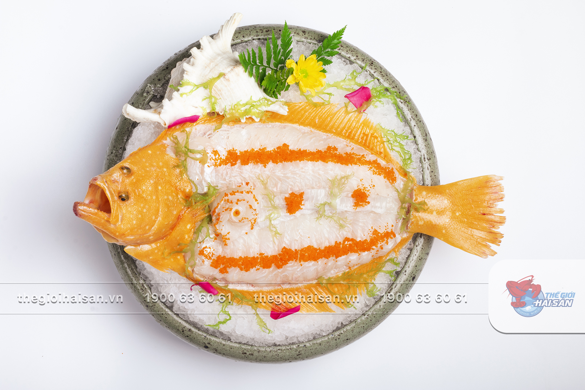 Sashimi cá bơn vàng - Một trong những món ăn được lòng thực khách nhất ở Thế giới hải sản