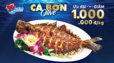 HS-Ca-Bon-web-preview